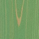 UROCO浮造りパステルグリーン